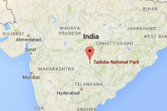 Tadoba_map