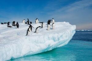 Antarctica photography tours